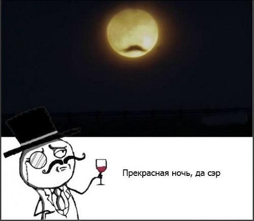 Смешные картинки на ночь