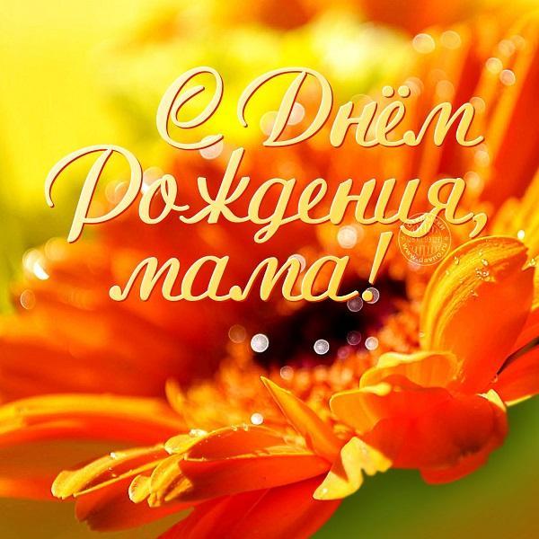 Read more about the article Смешные переделанные песни на День Рождения мамы