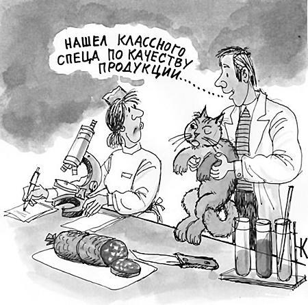Веселые карикатуры на разные темы