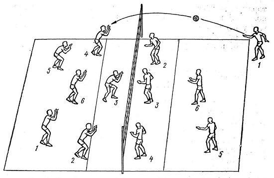 правила игры в волейбол