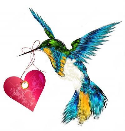 сердце колибри