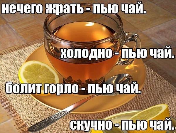 смешные статусы про чай