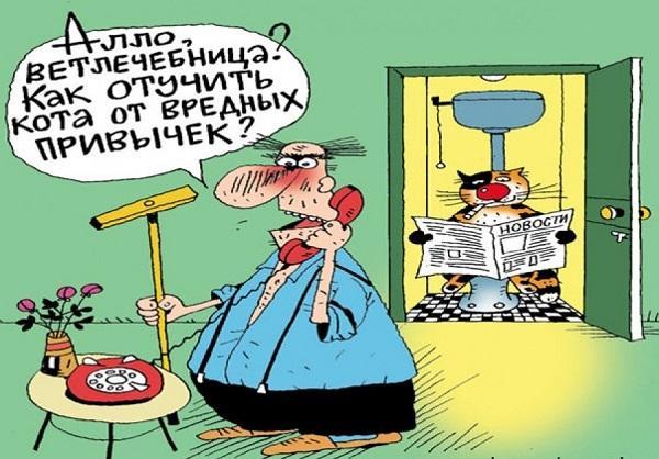 Свежие анекдоты №554