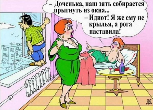 лучшие анекдоты про баб