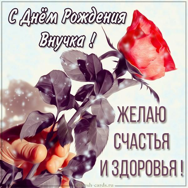 Read more about the article Трогательные поздравления внученьке