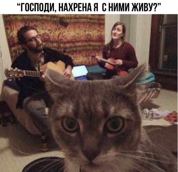 Read more about the article Лучшие фото с надписями