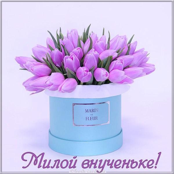 Read more about the article Короткие поздравления любимой внучке