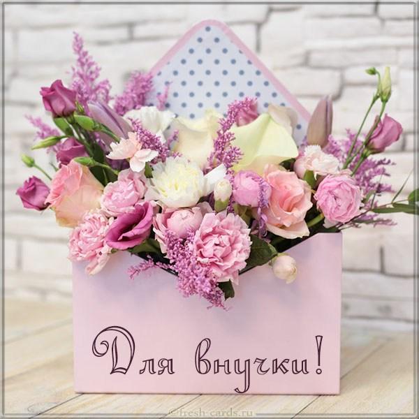 Read more about the article Прикольные поздравления внученьке