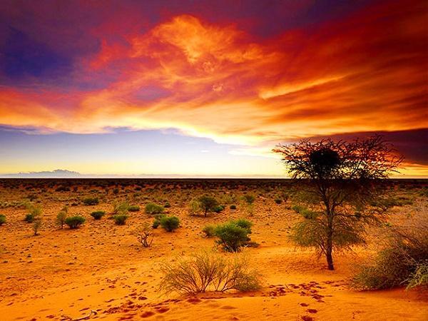 Read more about the article Интересные факты о Ботсване