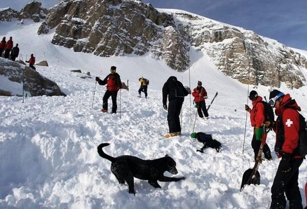 снежная лавина в альпах