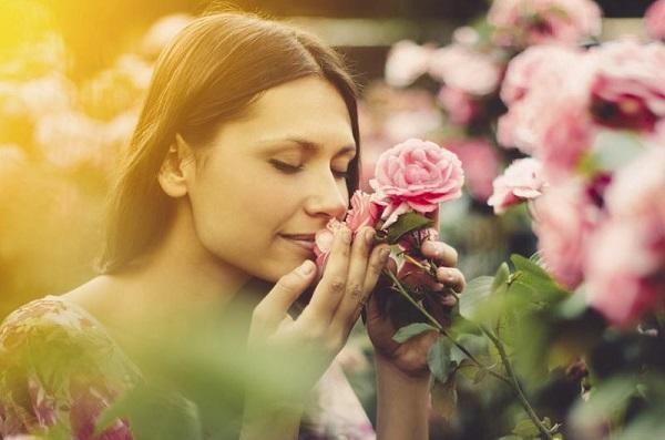 цветы и человек