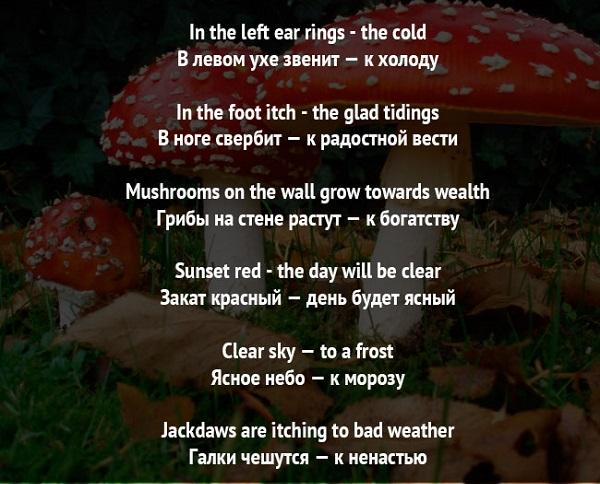 Read more about the article Приметы на английском языке с переводом