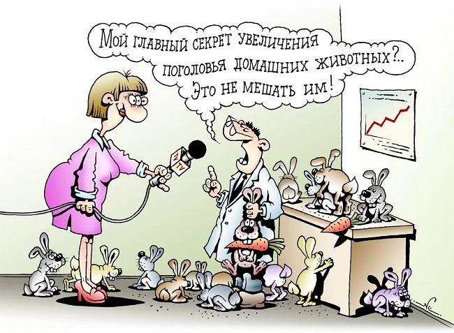 Read more about the article Свежие анекдоты и запарный четверг